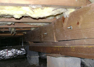 sagging crawl space with wooden shimming a Evans crawl space